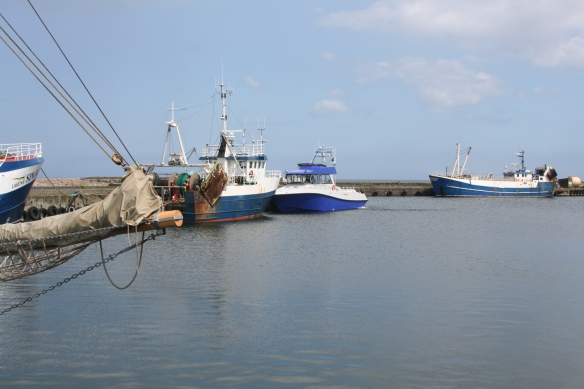 The PTA80 docked int the fishing harbor among the fishing boats.